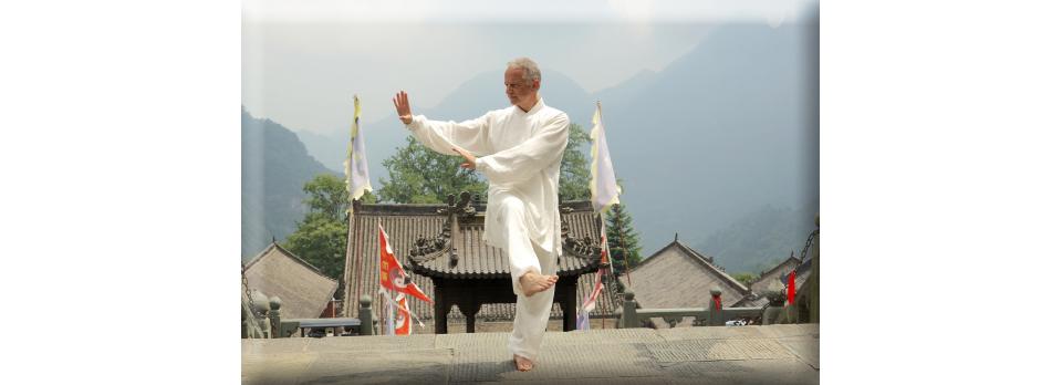 TAI CHI CHUAN Style Yang