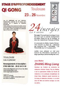 Maitre Zhang Ming Liang @ A Préciser